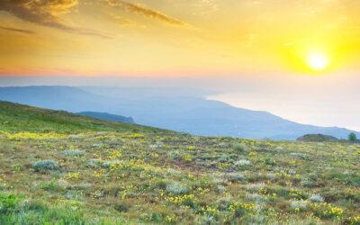 Yoga y el despertar de la consciencia